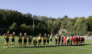 arsenal ladies shake hands with neulengbach before