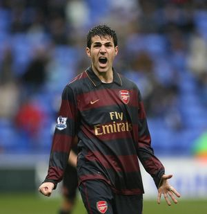 Cesc Fabregas celebrates the Arsenal victory at the final whistle