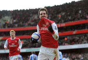 cesc fabregas celebrates scoring arsenals 2nd goal