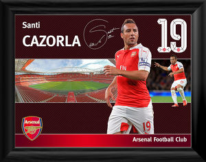 santi cazorla framed player profile
