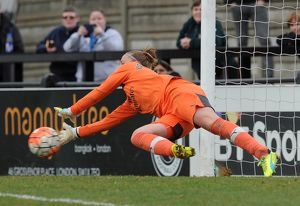 sari van veenendaal arsenal ladies saves