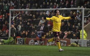 tomas rosicky celebrates scoring the arsenal goal