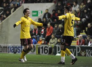tomas rosicky celebrates scoring the arsenal