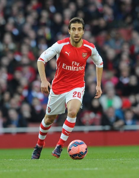 Mathieu Flamini (Arsenal). Arsenal 2:0 Middlesbrough. FA Cup 5th Round. Emirates Stadium, 15/2/15