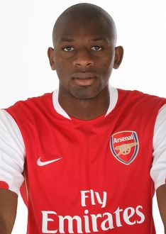 team/players coaches diaby abou/abou diaby arsenal