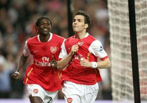team/players coaches fabregas cesc/cesc fabregas celebrates scoring arsenals 2nd