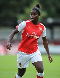 arsenal women/millwall lionessess v arsenal ladies 2014/millwall lionesses v arsenal ladies wsl