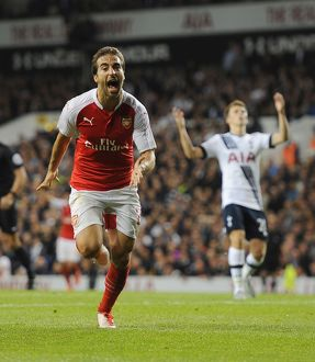 tottenham hotspur v arsenal capital one